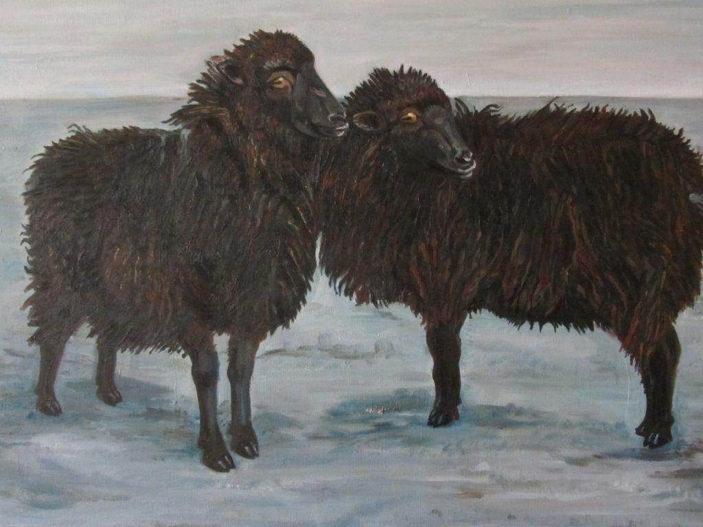 schapen-antje-en-liesje